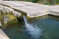 fontana araba - 9 maggio 2009  - Alcamo (2207 clic)