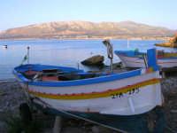 il porto - 23 ottobre 2006  - Trappeto (1004 clic)