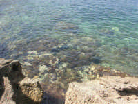 Golfo del Cofano: scogli e mare spettacolare - 23 agosto 2008  - San vito lo capo (529 clic)