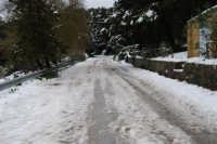 neve sul monte Bonifato - Riserva Naturale Orientata Bosco d'Alcamo - 15 febbraio 2009   - Alcamo (2166 clic)