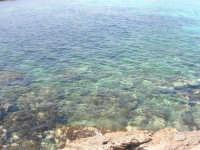 Golfo del Cofano: scogli e mare spettacolare - 23 agosto 2008  - San vito lo capo (500 clic)