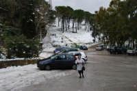 neve sul monte Bonifato - Riserva Naturale Orientata Bosco d'Alcamo - 15 febbraio 2009   - Alcamo (2085 clic)