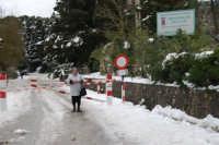 neve sul monte Bonifato - Riserva Naturale Orientata Bosco d'Alcamo - 15 febbraio 2009   - Alcamo (1810 clic)