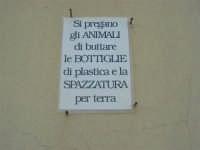 GALLITELLO - un particolare invito - 1 marzo 2009  - Alcamo (3656 clic)