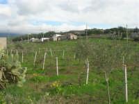 frazione di Buseto Palizzolo - panorama - 18 gennaio 2009   - Bruca (5042 clic)