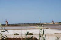 Saline Infersa e mulini a vento nella Riserva delle Isole dello Stagnone di Marsala - 25 maggio 2008   - Marsala (885 clic)