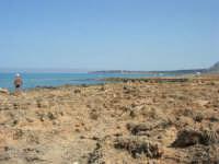 Golfo del Cofano: paesaggio brullo e mare spettacolare - 23 agosto 2008  - San vito lo capo (481 clic)