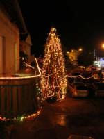 questa sera si sono accese le luci dell'albero di Natale addobbato con grande maestria da Giacomo Pecoraro - 6 dicembre 2008  - Alcamo (834 clic)