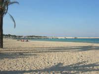 la spiaggia - 12 ottobre 2008   - San vito lo capo (560 clic)