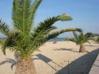 la spiaggia - 12 ottobre 2008   - San vito lo capo (433 clic)