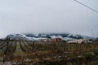 alle pendici del monte Bonifato innevato - 14 febbraio 2009  - Alcamo (3257 clic)