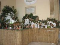 il presepe dinanzi la Chiesa di S. Maria del Gesù - 7 dicembre 2008  - Alcamo (887 clic)