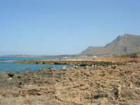 Golfo del Cofano: paesaggio brullo e e mare stupendo - 23 agosto 2008  - San vito lo capo (596 clic)