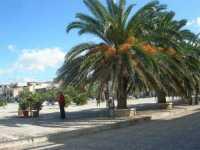 Piazza Petrolo - 20 settembre 2009  - Castellammare del golfo (1008 clic)