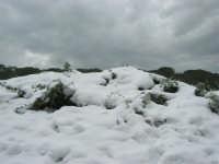 neve sul monte Bonifato - 15 febbraio 2009   - Alcamo (1969 clic)