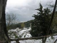 neve sul monte Bonifato - 15 febbraio 2009   - Alcamo (1789 clic)