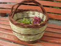 paniere con uva proveniente da Calatafimi Segesta - 5 settembre 2008   - Castellammare del golfo (1575 clic)