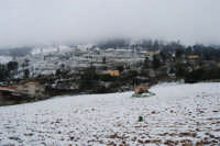 neve in contrada Tre Noci - 14 febbraio 2009  - Alcamo (2211 clic)