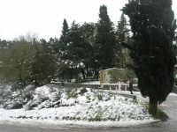 neve sul monte Bonifato - Riserva Naturale Orientata Bosco d'Alcamo - 15 febbraio 2009   - Alcamo (2136 clic)
