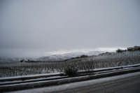 neve in contrada Tre Noci - 14 febbraio 2009  - Alcamo (2209 clic)