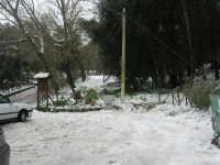 neve sul monte Bonifato - Riserva Naturale Orientata Bosco d'Alcamo - 15 febbraio 2009   - Alcamo (2284 clic)