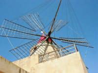 Mulino a vento nella Riserva delle Isole dello Stagnone di Marsala - 25 maggio 2008   - Marsala (907 clic)