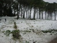 neve sul monte Bonifato - Riserva Naturale Orientata Bosco d'Alcamo - 15 febbraio 2009   - Alcamo (1942 clic)