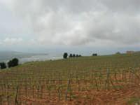 panorama dal monte Erice - 1 maggio 2009  - Erice (2353 clic)
