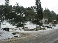 neve sul monte Bonifato - Riserva Naturale Orientata Bosco d'Alcamo - 15 febbraio 2009   - Alcamo (1885 clic)