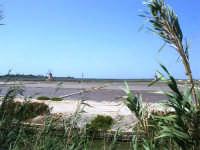 Saline Infersa e mulini a vento nella Riserva delle Isole dello Stagnone di Marsala - 25 maggio 2008     - Marsala (835 clic)