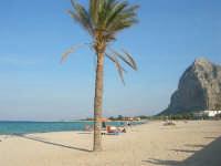 la spiaggia - 12 ottobre 2008   - San vito lo capo (515 clic)