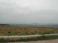 Macari - Golfo del Cofano - il forte vento di scirocco spazza il mare e solleva mulinelli d'acqua che partono dalla riva e si allontanano velocemente verso il largo - 29 marzo 2009  - San vito lo capo (1669 clic)