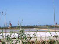 Saline Infersa e mulini a vento nella Riserva delle Isole dello Stagnone di Marsala - 25 maggio 2008   - Marsala (740 clic)