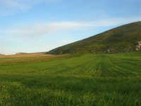 Montagna Grande - 21 febbraio 2009   - Fulgatore (3167 clic)