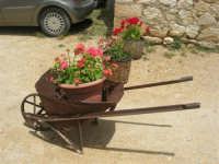 Baglio Ardigna - carriola - 17 maggio 2009  - Salemi (3874 clic)