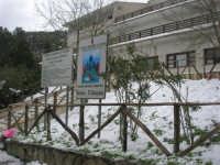 neve sul monte Bonifato - Riserva Naturale Orientata Bosco d'Alcamo - 15 febbraio 2009   - Alcamo (2614 clic)