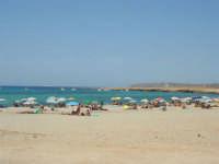 Golfo del Cofano: spiaggia e mare stupendo - 23 agosto 2008  - San vito lo capo (498 clic)