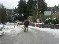 neve sul monte Bonifato - Riserva Naturale Orientata Bosco d'Alcamo - 15 febbraio 2009   - Alcamo (2341 clic)