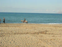 Baia di Guidaloca: cavalcata in riva al mare - 21 settembre 2008   - Castellammare del golfo (471 clic)