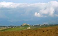 campagna alcamese - Castello di Calatubo - 23 febbraio 2009   - Alcamo (2310 clic)
