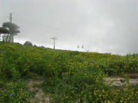 al Belvedere San Nicola - la foschia avvolge la funivia - 1 maggio 2009   - Erice (2213 clic)