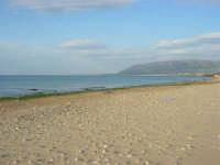 spiaggia di levante - golfo di Castellammare - 1 marzo 2009  - Balestrate (3006 clic)