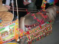1ª Rassegna del Folklore Siciliano - Il Gruppo Folkloristico Torre Sibiliana organizza: SAPERI E SAPORI DI . . . MATAROCCO, una grande festa dedicata al folklore e alle tradizioni popolari - 30 novembre 2008    - Marsala (770 clic)