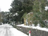 neve sul monte Bonifato - Riserva Naturale Orientata Bosco d'Alcamo - 15 febbraio 2009   - Alcamo (2285 clic)