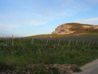 paesaggio campestre - 21 febbraio 2009   - Fulgatore (4140 clic)