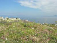 Capo San Vito - vista sul golfo di Castellammare - 10 maggio 2009   - San vito lo capo (1343 clic)