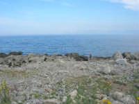 Capo San Vito - la costa rocciosa e l'azzurro del mare - 10 maggio 2009   - San vito lo capo (1390 clic)