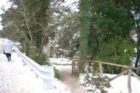 neve sul monte Bonifato - Riserva Naturale Orientata Bosco d'Alcamo - La Funtanazza - 15 febbraio 2009   - Alcamo (2612 clic)