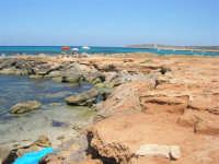 Golfo del Cofano - scogliera, mare stupendo - 30 agosto 2008  - San vito lo capo (438 clic)