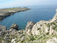 Capo San Vito - la costa rocciosa ed il mare - 10 maggio 2009   - San vito lo capo (1582 clic)
